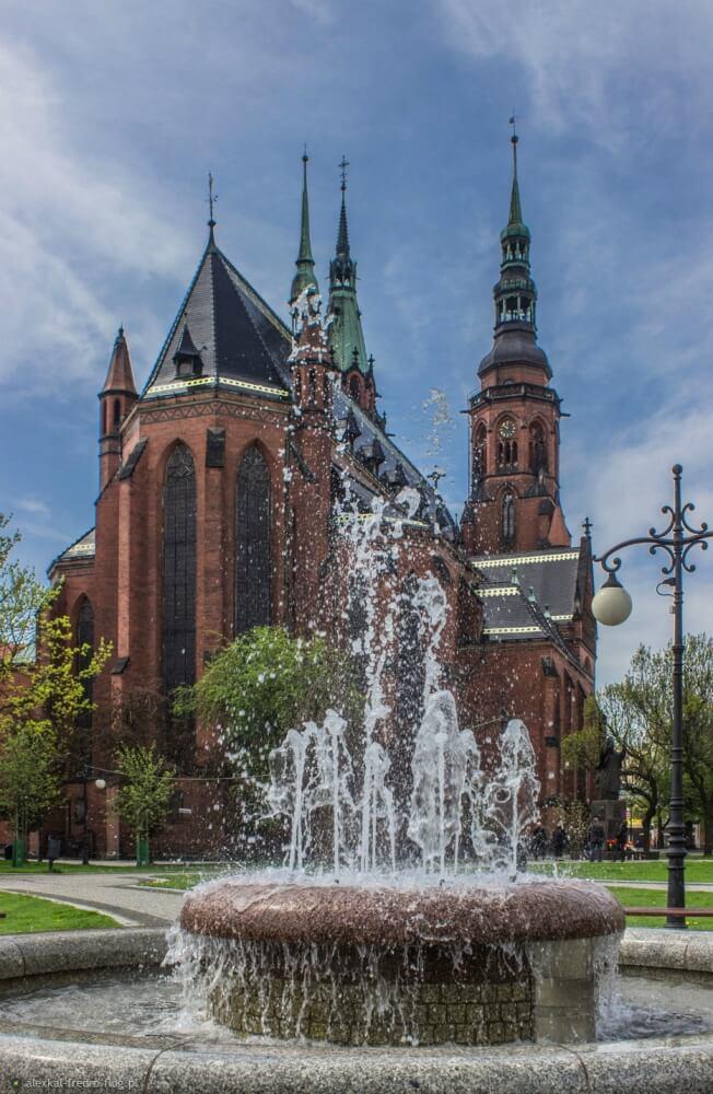 katedra legnicka